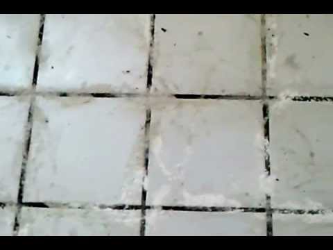 Grout Cleaning With Oxy Bleach You