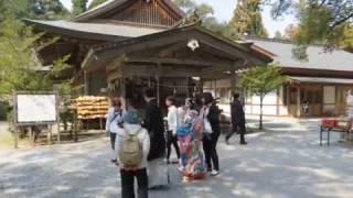 24代井伊直政は徳川家康に任え、井伊の赤鬼と恐れられる活躍をした。...