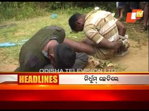 2 PM  Headlines  14 Nov 2017 | Today News Headlines - OTV