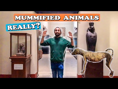 TREASURES of the Egyptian Museum CAIRO
