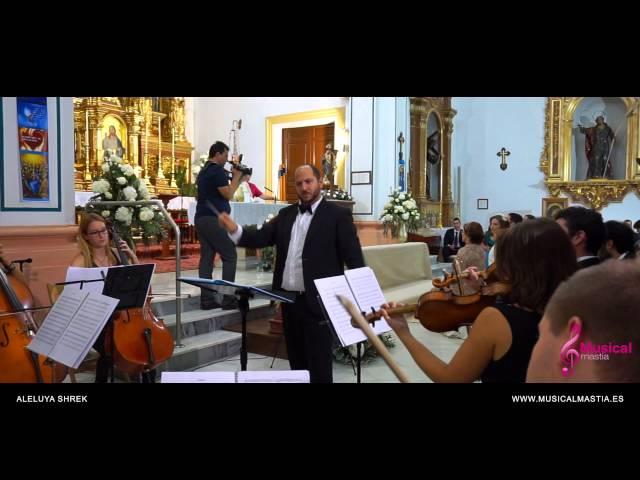 Aleluya - Shrek - Leonar Cohen wedding music violin Bodas Murcia Bodas almeria Bodas Musical Mastia