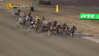 Vidéo de la course PMU PRIX KESACO PHEDO