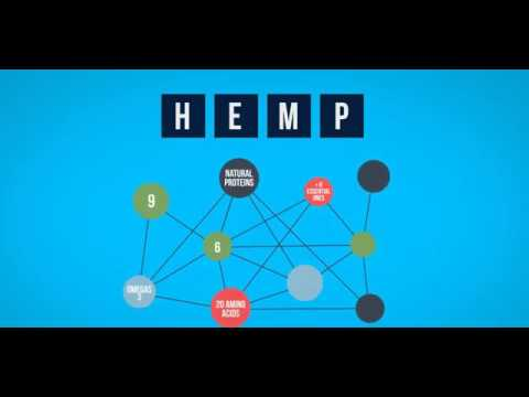 Hemp Oil - Hemp Based CBD Products