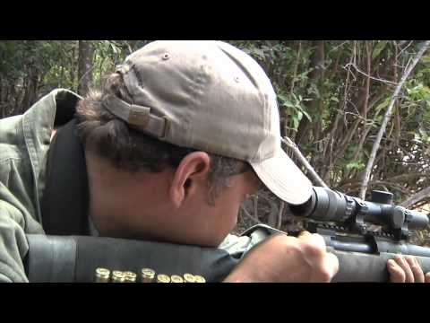 TWSA 2011 Episode 06 Alberta Mule Deer