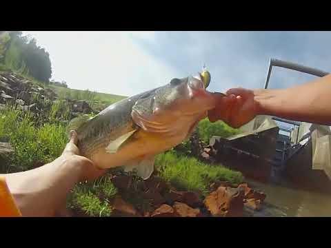 Lake Tobesofkee Dam Fishing- 6 Pound Bass!