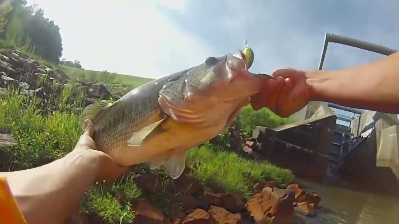 Lake tobesofkee dam fishing 6 pound bass youtube for Lake tobesofkee fishing