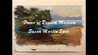 Gambar cover Museum Demo by Susan Martin Spar