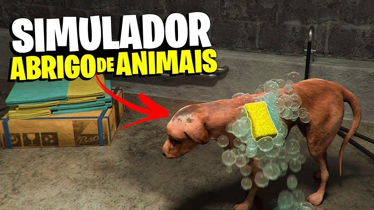 ABRI UM ABRIGO DE ANIMAIS! RESGATANDO E TRATANDO ANIMAIS ABANDONADOS - Animal Shelter #01
