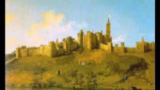 Mozart - Oboe concerto - I. Allegro aperto