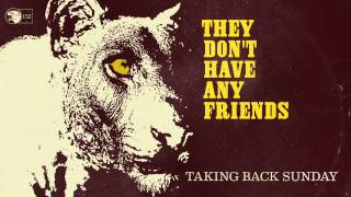 Watch Taking Back Sunday They Dont Have Any Friends video