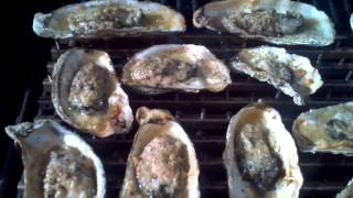 Grilling Oysters With Butter, Garlic, And Parmesan Cheese