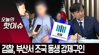 조국 동생 강제 구인…구속 여부 이르면 오늘 밤 결정 …