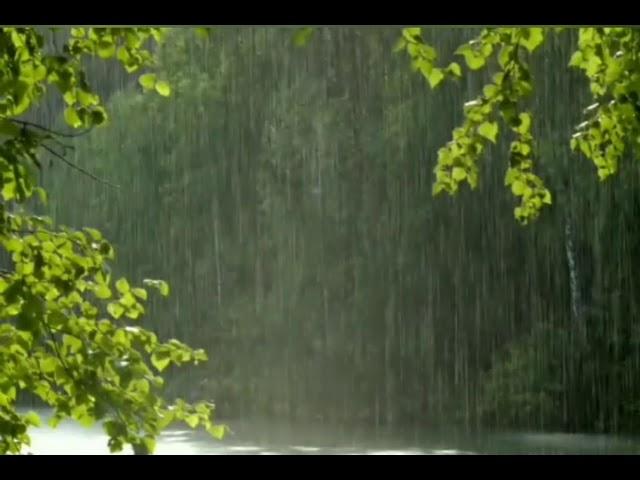 Смотреть видео Тема слепого дождя