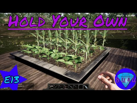 Spiders, plant bed & now we have power! - Hold Your Own | Let's Play | S1E13