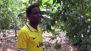 Spice Farm in Kiwengwa, Zanzibar