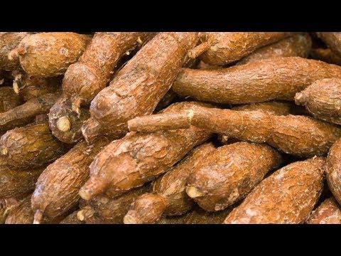 13 Surprising Health Benefits of Cassava