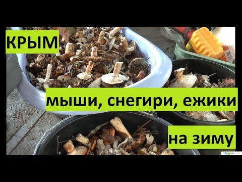 Крым. Продуктовая блокада?