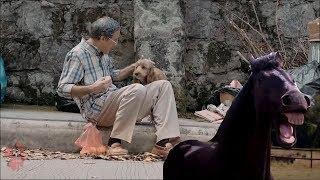 দেশী বিদেশী যে বিজ্ঞাপণ দেখে হাসবেন ও কাঁদবেন | পর্ব-৪
