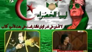 شاهد هاذا الفيديو لتعرف لماذا نحب القذافي !