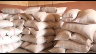 Malanville Innovation Platform (IP) in Benin - Modern rice parboiling unit