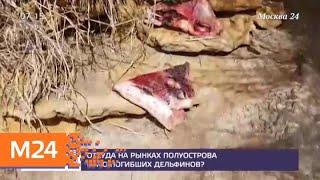 Смотреть видео Откуда на рынках полуострова мясо погибших дельфинов - Москва 24 онлайн