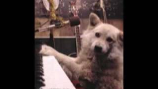 by NYmaster/copy http://musictrack.jp/user/12241 HPホームページ htt...