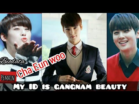 """my-id-is-gangnam-beauty""-biodata-cha-eun-woo"