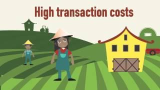 Client assessment in agricultural lending