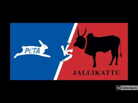 🔔MAGIC VIDEO TAMIL I💥MAGIC TRICK TAMIL #524 I PETA vs JALLIKATTU