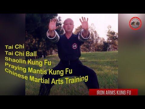 Kung Fu Republic a Chinese Martial Arts School in Sydney Australia