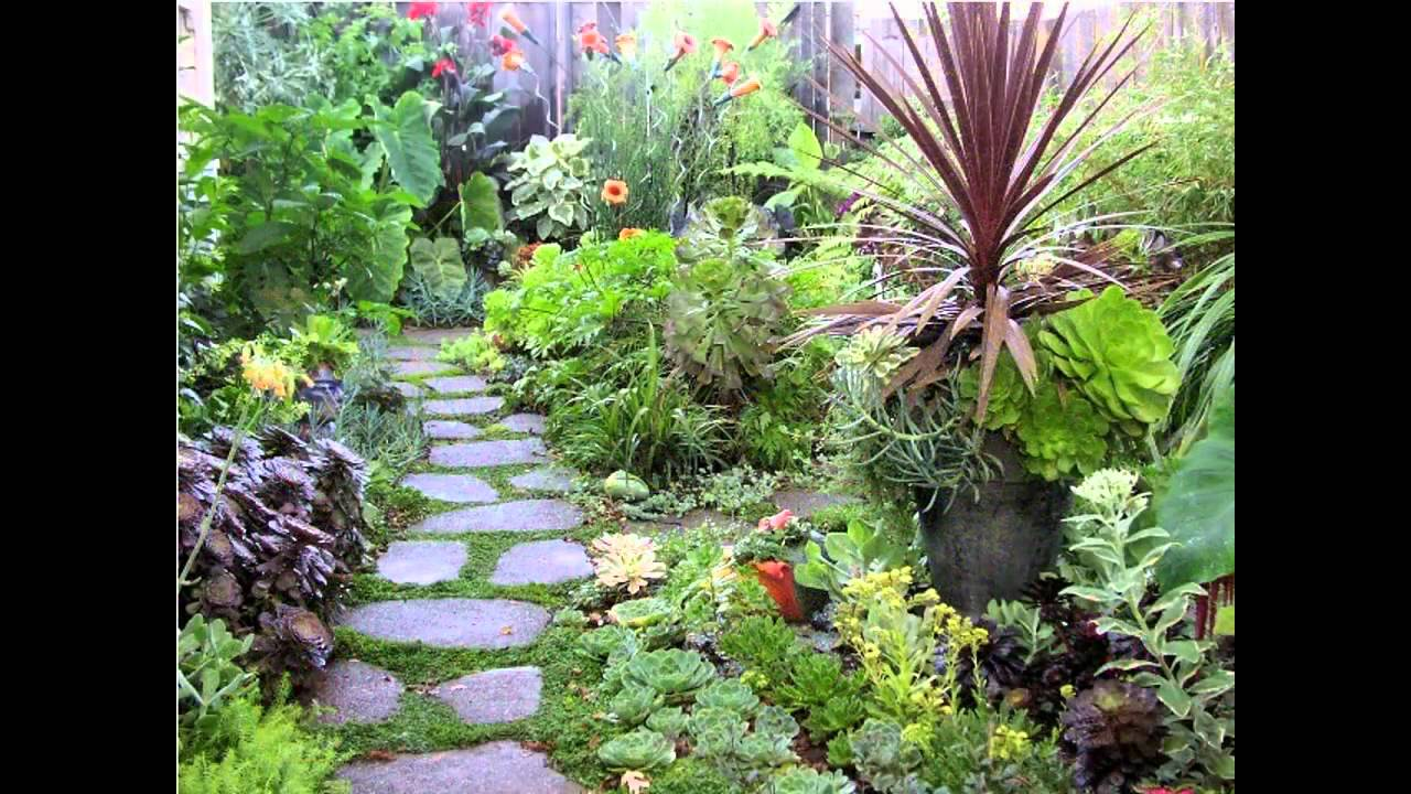 Creative tropical garden design design youtube - Small backyard landscape designs ...