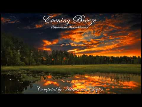 Relaxing Celtic Music - Evening Breeze (Remastered Nature Sounds)