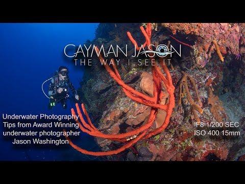 Underwater Photography Tips With Award Winning Underwater Photographer Jason Washington