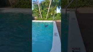 Aprendiendo a nadar con José