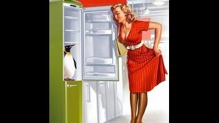 Смотреть видео мастера по ремонту  холодильников