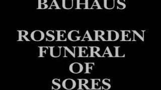 Play Rosegarden Funeral Of Sores