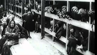 Surviving the Auschwitz Gas Chamber - Alice Sylvester