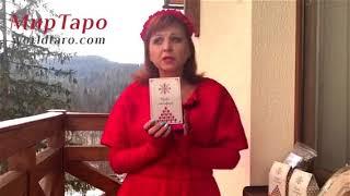Видео с Карпат. Чаи и травы из родины Мольфаров.