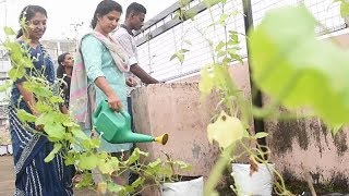 Kochi school auctions organic produce to encourage farming
