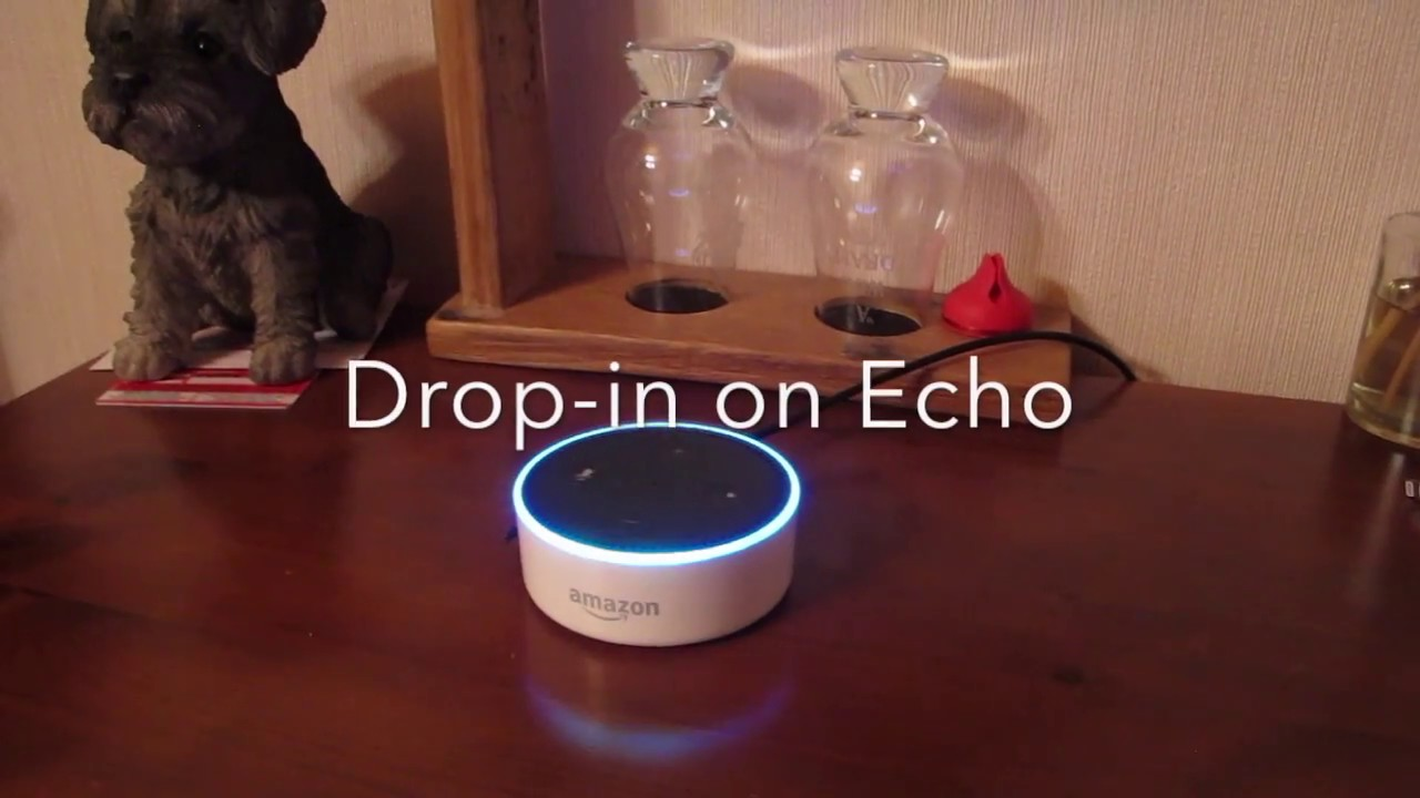 Echo Drop In