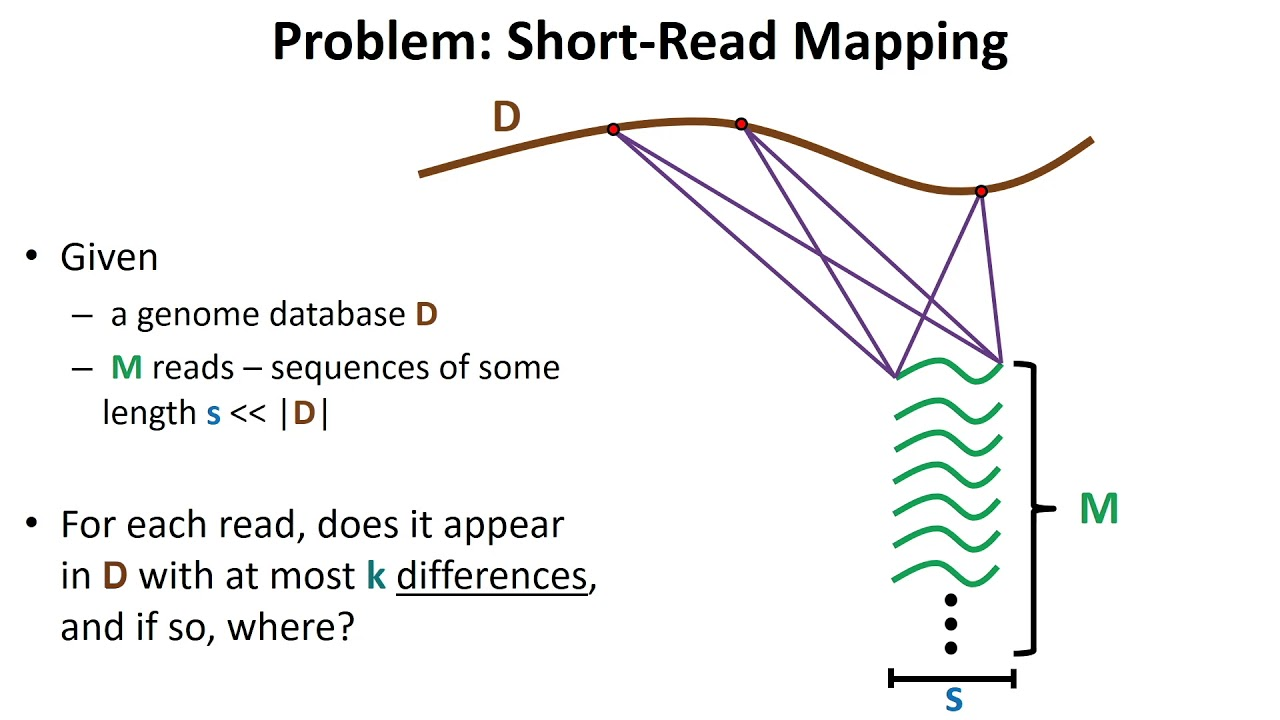Rna Seq Read Mapping Youtube Aligning rna seq reads to reference