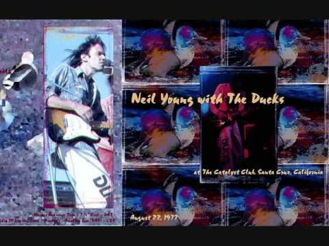 Neil Young & the Ducks -Windward Passage