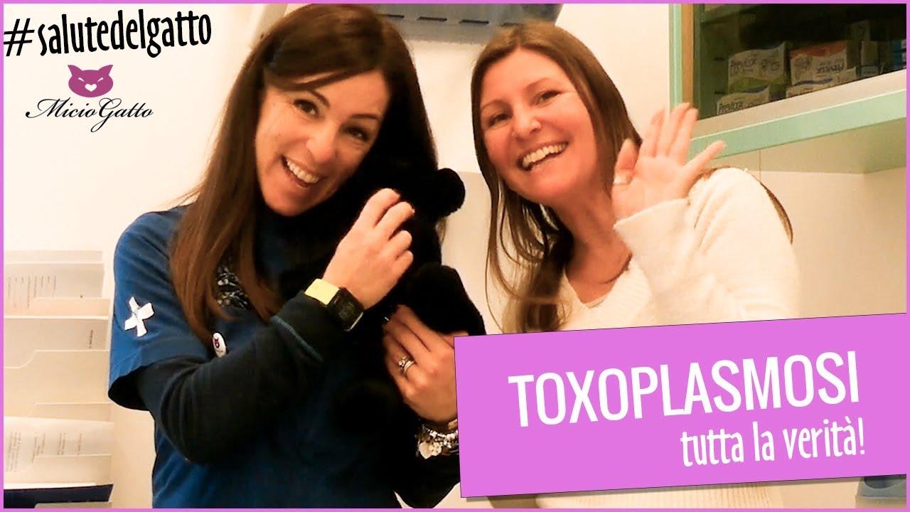 puoi morire di toxoplasmosi?