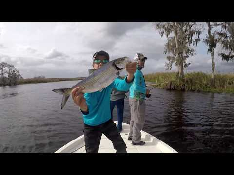 St. Johns River Fishing For Crappie And American Shad