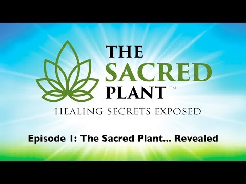 The Sacred Plant Secrets Exposed: Episode 1