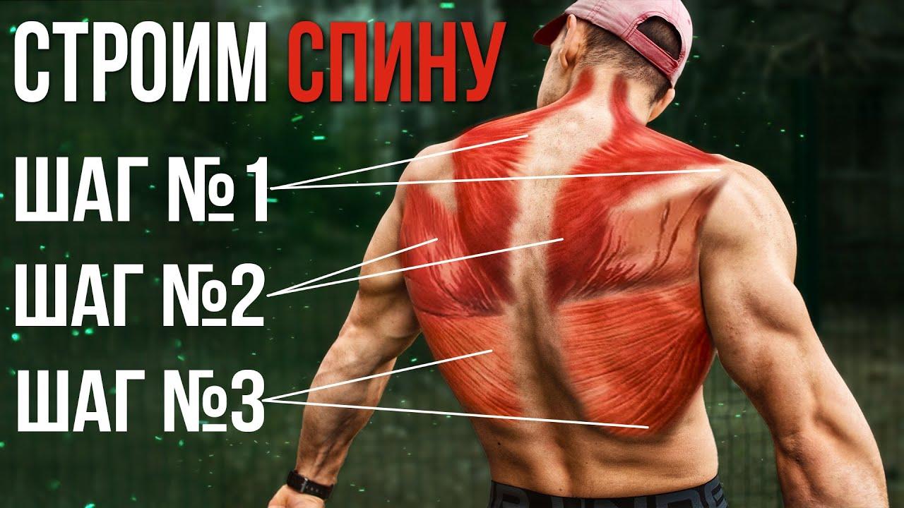 Спина по Всем Фронтам. Готовая тренировка основных сегментов мышц спины.
