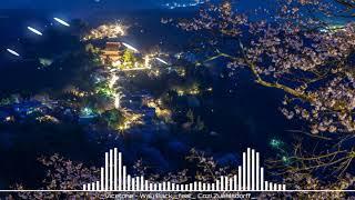 Vicetone - Way Back | Nhạc Hot Tik Tok Trung Quốc ✔