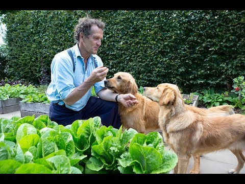 Monty Don on Nigel, Nell and other fourlegged friends