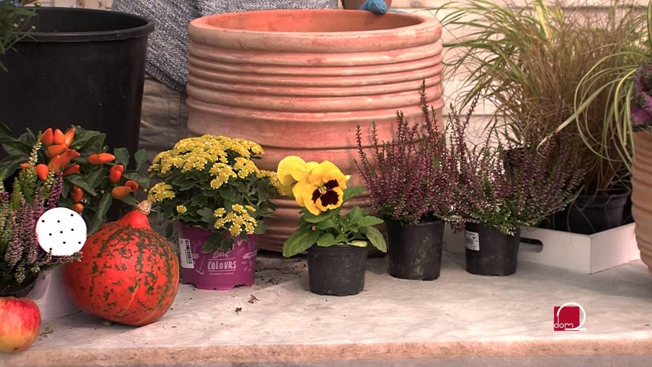 Kreativne ideje za uređenje vrta u duhu jeseni - YouTube