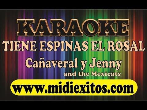 TIENE ESPINAS EL ROSAL - CAÑAVERAL Y JENNY AND THE MEXICATS - KARAOKE